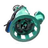 Sewage Dirty Water Septic Sump Pump with grinder Submersible   Pump CTR 550